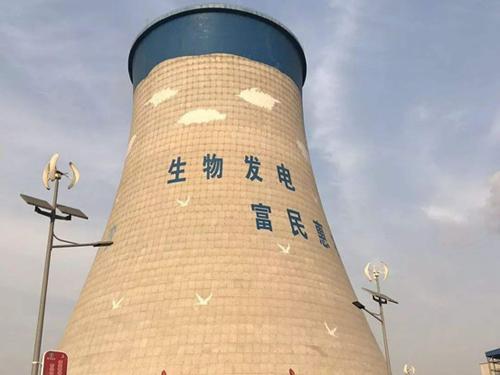 廊坊大城琦泉生物发电工程水资源论证报告